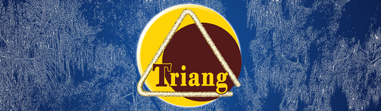 bandeau Triang